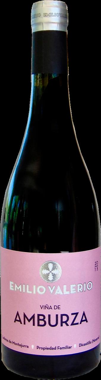 Amburza 2015